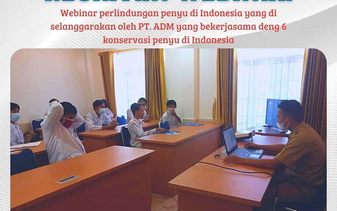 Webinar tentang perlindungan penyu di Indonesia
